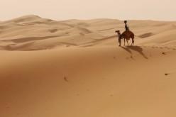 Google-ն ուղտեր է վարձել անապատները նկարահանելու համար (վիդեո)