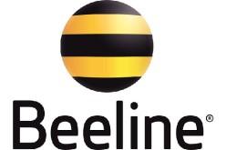 Beeline կապի ծառայությունների համար կարելի է վճարել  առցանց անմիջապես  MasterCard և Visa բանկային քարտերի միջոցով