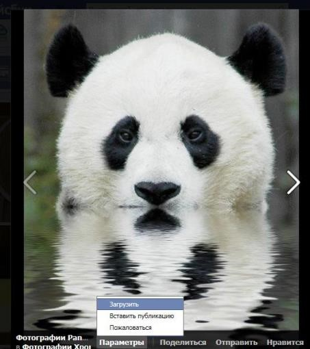 panda security facwbook 1