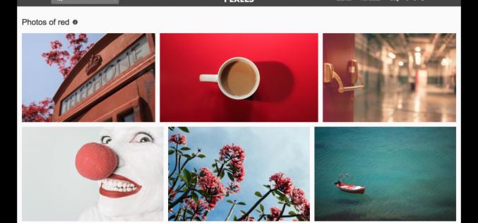 Pexels 2.0․ անվճար լուսանկարների ագրեգատոր՝ ընդլայնված որոնման համակարգով