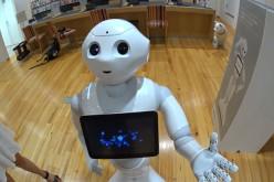 Ճապոնիայում ներկայացվել է «ռոբոտ-պղպեղ» (տեսանյութ)