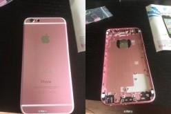 Նոր iPhone-ը կստանա նոր գույն