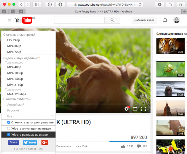 Youtube download 2