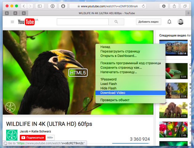 Youtube download 3
