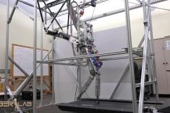 Durus-2D ռոբոտը հայտնվել է վազքի մարզասարքի վրա