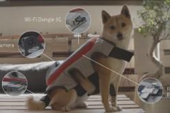 Սարք, որը թույլ կտա շներին սելֆիներ անել