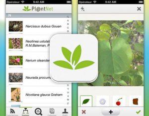 PlantNet 2