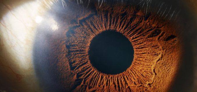 Ռոբոտը վիրահատություն է կատարել աչքի ներսում