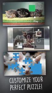 jigsaw-wonder-kittens2