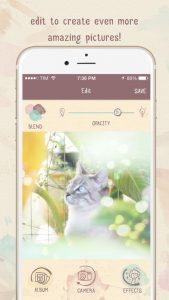 screen696x696 (5)