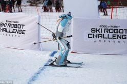 Ռոբոտները նույնպես մրցել են ձմեռային օլիմպիական խաղերի ընթացքում (տեսանյութ)