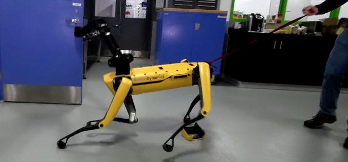 Boston Dynamics-ի շուն–ռոբոտին սովորեցրել են հակառակվել մարդուն (տեսանյութ)