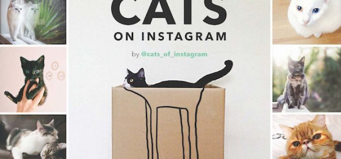 Instagram–ի հայտնիները