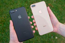Կասեցվել է iPhone 8 Plus–ի արտադրությունը. Apple–ը պարզաբանում է