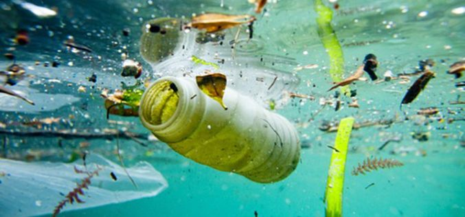 Օվկիոնասում ամեն օր հայտնվում է մոտ 8 միլիոն տոննա չներծծվող պլաստիկ