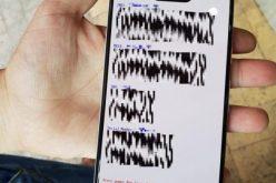 Ցանցում հայտնվել են Google Pixel 3 XL–ի նոր լուսանկարները