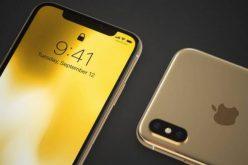 iPhone XC -ը կթողարկվի 5 գույնով