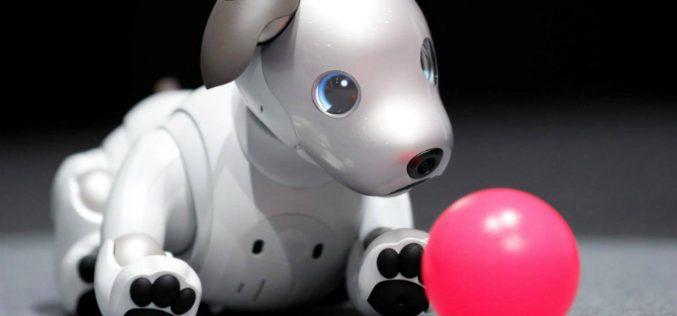 Sony–ն ներկայացրել է Aibo շուն ռոբոտին