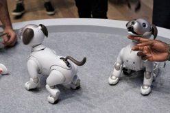 Sony-ն ռոբոտ շանը նոր գործառույթներով է զինել