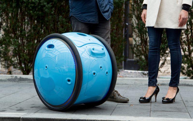 Gita. ռոբոտ, որ հետ կարելի է խանութ գնալ