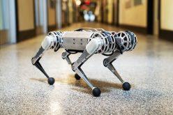 Մասաչուսեթսի համալսարանում ստեղծված ռոբոտը ակրոբատիկ հնարքներ է կատարում (տեսանյութ)