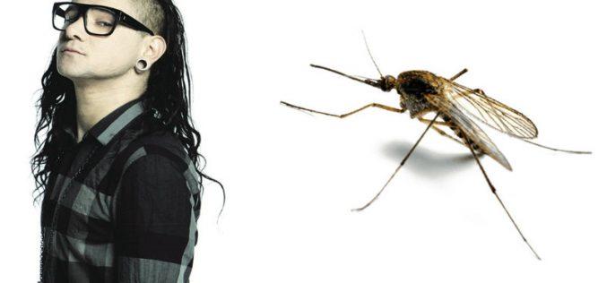 Էլեկտրոնայի  երաժշտությունը վնասազերծում է մոծակներին․ գիտնականներ