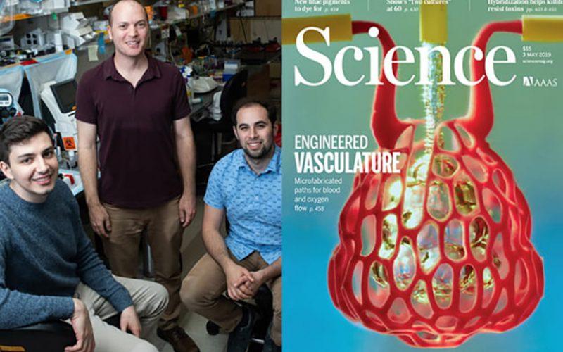 Հայ գիտնականը մասնակցել է օրգանների 3D տպագրման փորձերին