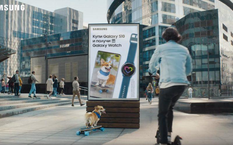 Samsung-ի խանութներ հնարավոր կլինի այցելել տնային կենդանու հետ