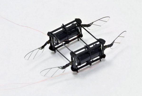 Արհեստական մկանները ռոբոտ-մեղվին օգնում են թռչել