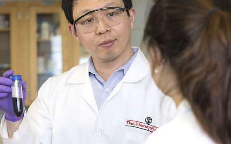 Կերակրի աղը կանգնեցրել է քաղցկեղի բջիջների աճը