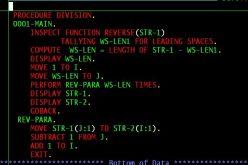 ԱՄՆ-ում փնտրում են COBOL ծրագրավորման լեզվի մասնագետ․ ապարդյուն