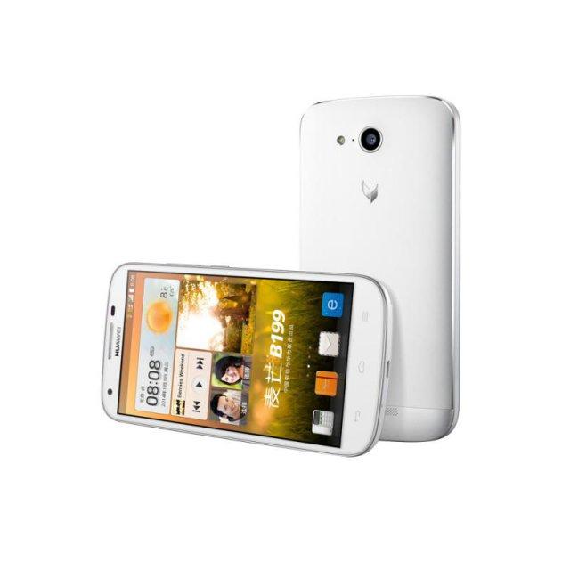 Huawei B199_1