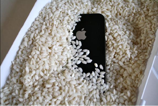 Rice iphone