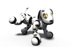 Zoomer շուն-ռոբոտ՝ Ձեր տնային կենդանին
