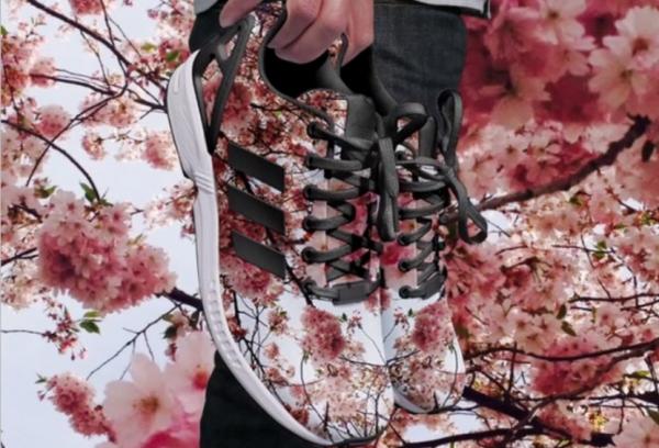 adidas-830x565