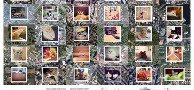 Նկարիչը գումար է հավաքում՝ կատուների նկարներով քարտեզ ստեղծելու համար