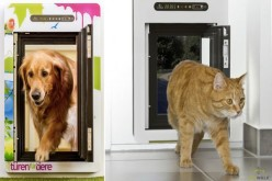 Petwalk՝ «խելացի» դուռ Ձեր տնային կենդանու համար