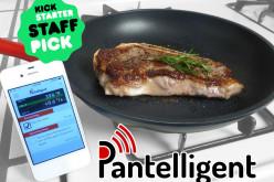 Pantelligent «խելացի» թավան մեծ իրարանցում է առաջացրել Kickstarter-ում (տեսանյութ)