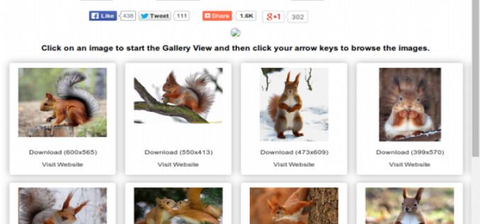 Google Image Ripper` նկարներ փնտրելու հարմար և հեշտ տարբերակ