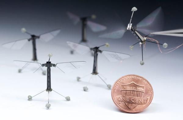 tiny-robo-fly-micro-energy-660